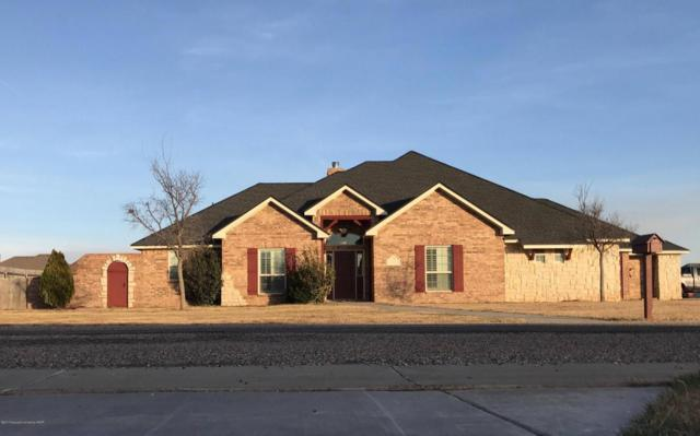 9051 Herring Park Dr, Bushland, TX 79119 (#17-111000) :: Edge Realty