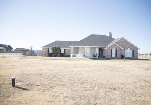 20300 Hunters Run, Canyon, TX 79015 (#17-111272) :: Elite Real Estate Group