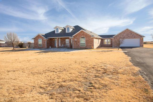 2901 Homestead Trl, Amarillo, TX 79118 (#18-111421) :: Elite Real Estate Group