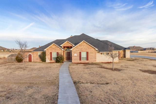9051 Herring Park Dr, Bushland, TX 79119 (#18-111627) :: Elite Real Estate Group