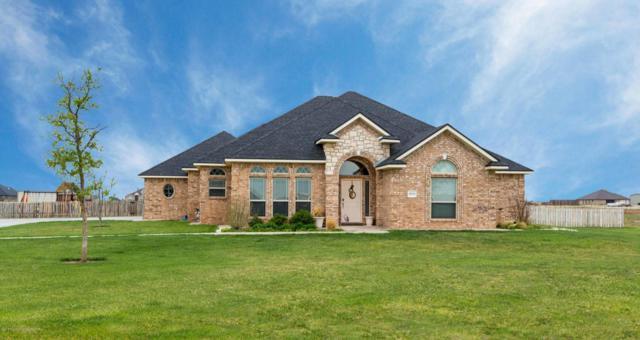 16800 Dove Meadow Rd, Canyon, TX 79015 (#18-111728) :: Elite Real Estate Group