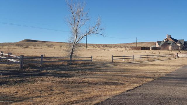 8 Tascocita Cir, Amarillo, TX 79124 (#18-111818) :: Gillispie Land Group