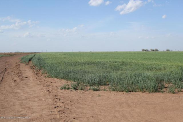 Long Farm, Plainview, TX 79072 (#18-112004) :: Big Texas Real Estate Group