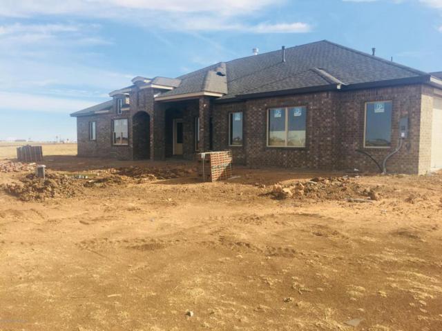 2151 Ginger, Amarillo, TX 79124 (#18-112404) :: Elite Real Estate Group