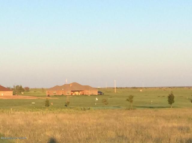 13020 Wilderness Trl, Amarillo, TX 79119 (#18-112764) :: Elite Real Estate Group