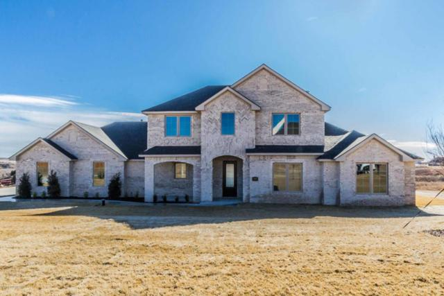12401 Putter Dr, Canyon, TX 79015 (#18-113018) :: Edge Realty