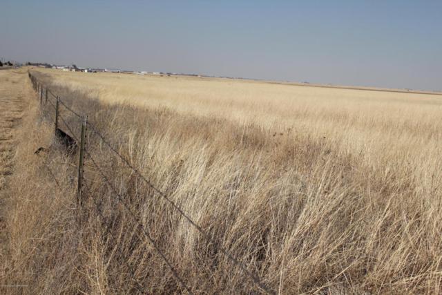 0 Pullman, Amarillo, TX 79118 (#18-113085) :: Edge Realty