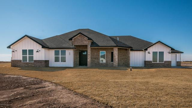 10251 Beechcraft, Amarillo, TX 79119 (#18-113259) :: Edge Realty