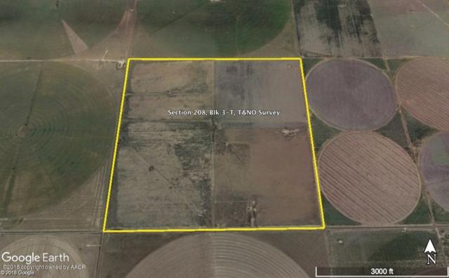 Ne Moore County 640, Dumas, TX 79029 (#18-113275) :: Elite Real Estate Group
