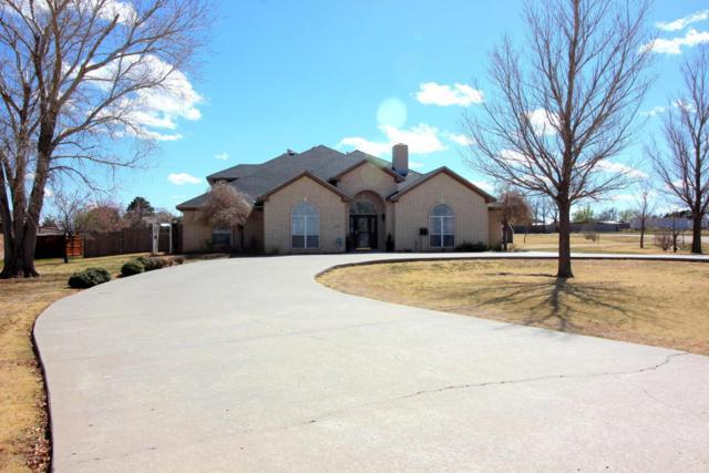 11315 Collin Wade Rd, Amarillo, TX 79124 (#18-113604) :: Elite Real Estate Group