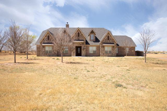 8940 Tradewind St, Amarillo, TX 79118 (#18-113634) :: Lyons Realty