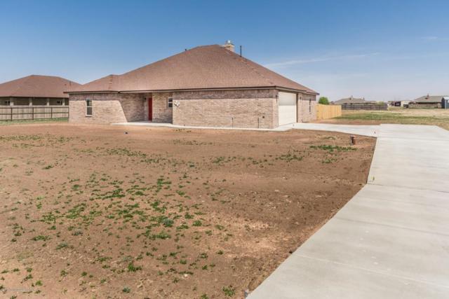 19000 19th St, Bushland, TX 79012 (#18-113800) :: Elite Real Estate Group