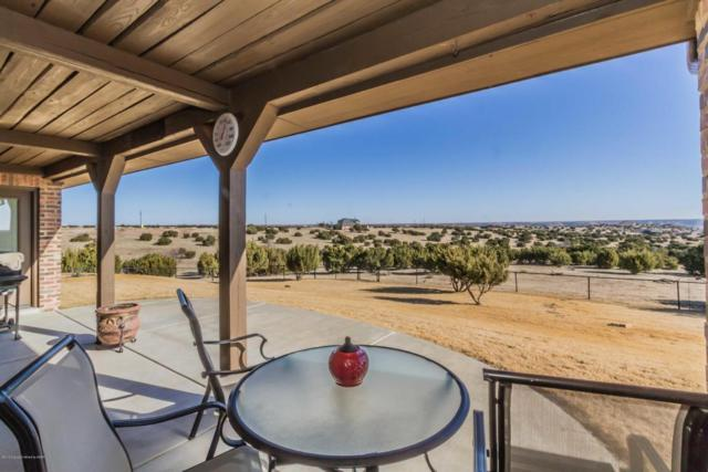 24101 Sunday Canyon Rd, Canyon, TX 79015 (#18-113810) :: Elite Real Estate Group