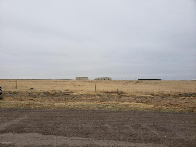12041 Equestrian Trl, Amarillo, TX 79019 (#18-113840) :: Gillispie Land Group
