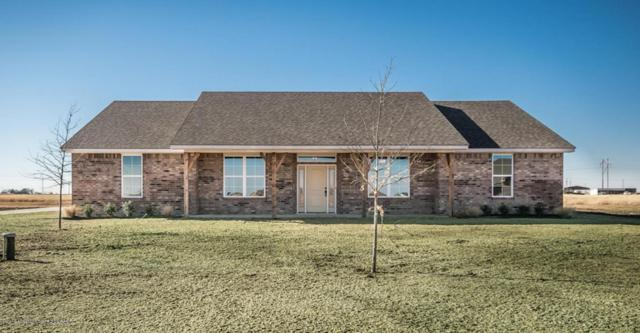 8310 Blue Duck, Amarillo, TX 79118 (#18-113850) :: Lyons Realty