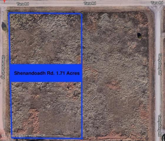 Shenandoah Rd, Amarillo, TX 79118 (#18-113908) :: Gillispie Land Group