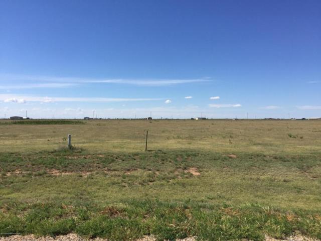 12820 Wandering Rd, Amarillo, TX 79118 (#18-114060) :: Lyons Realty