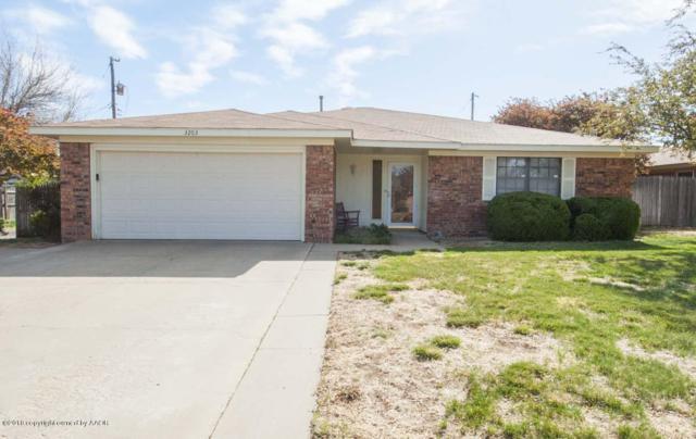 3203 Holyoke Trl, Amarillo, TX 79121 (#18-114096) :: Big Texas Real Estate Group