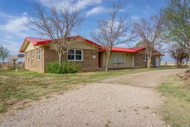 16801 Fm 2219, Amarillo, TX 79119 (#18-114351) :: Big Texas Real Estate Group