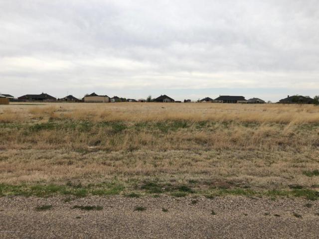 5600 Cedar Springs Trl., Bushland, TX 79119 (#18-114456) :: Elite Real Estate Group