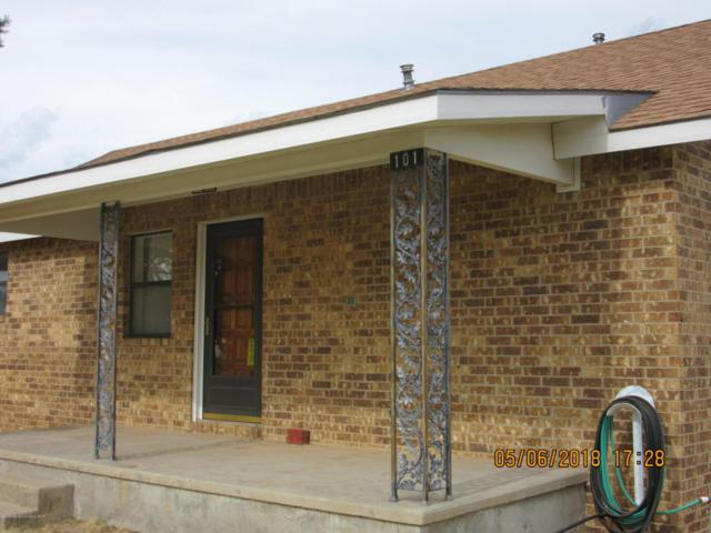 101 Arikara Rd, Fritch, TX 79036 (#18-114472) :: Big Texas Real Estate Group