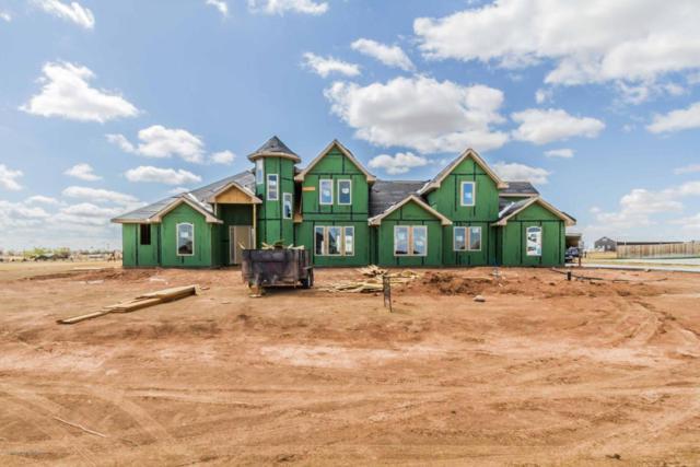 7751 Autumn Dr, Canyon, TX 79015 (#18-114506) :: Big Texas Real Estate Group