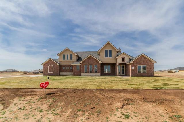 9525 Hey Jude Ln, Amarillo, TX 79119 (#18-114518) :: Big Texas Real Estate Group