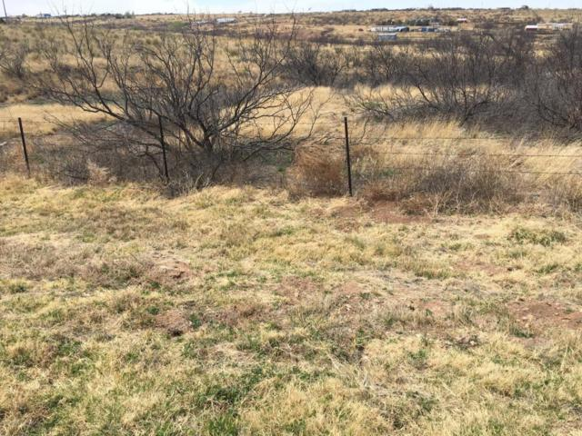 Whitewing Dr, Amarillo, TX 79108 (#18-114630) :: Gillispie Land Group