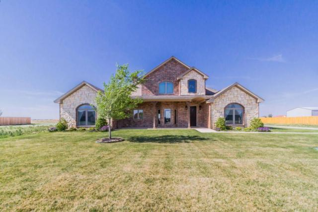 8720 Paintbrush Dr, Amarillo, TX 79119 (#18-114731) :: Big Texas Real Estate Group