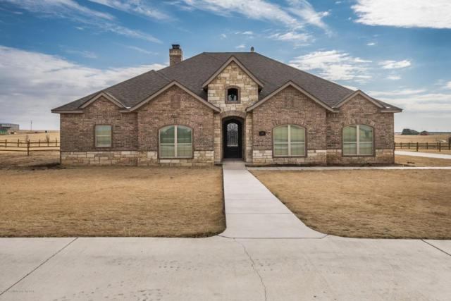13151 Genevieves Way, Amarillo, TX 79118 (#18-114747) :: Lyons Realty