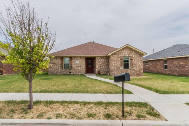 4507 S Wilson St, Amarillo, TX 79118 (#18-114972) :: Big Texas Real Estate Group