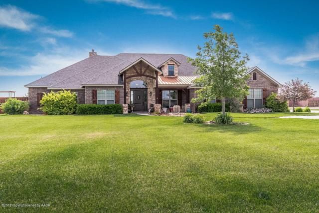 17351 White Wing Rd, Canyon, TX 79015 (#18-114992) :: Big Texas Real Estate Group