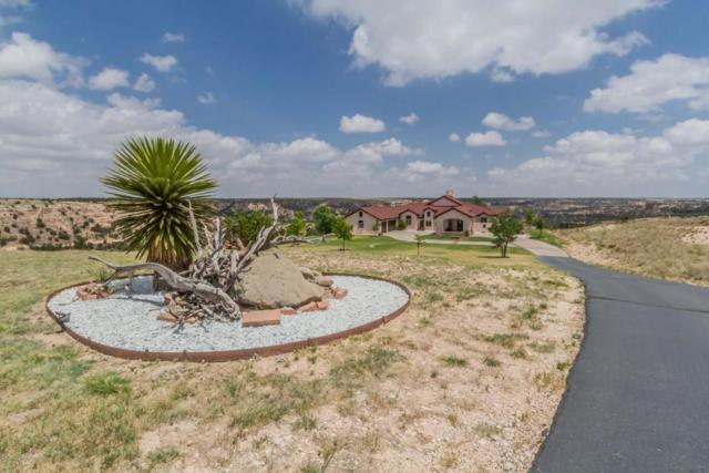 7950 East Lake View Rd, Amarillo, TX 79118 (#18-115041) :: Big Texas Real Estate Group
