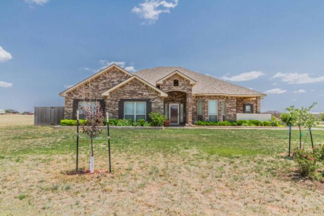 5101 Cedar Springs Trl, Amarillo, TX 79119 (#18-115042) :: Big Texas Real Estate Group