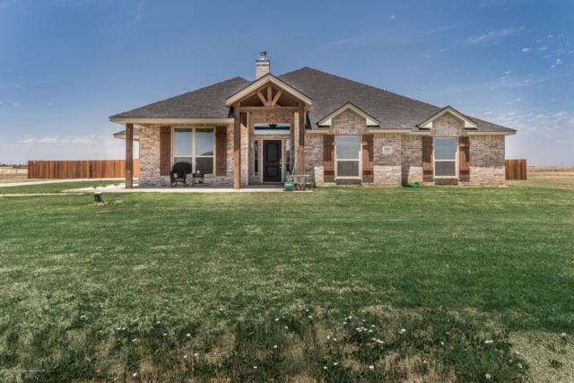 18650 Oak Springs Trl, Bushland, TX 79119 (#18-115140) :: Keller Williams Realty