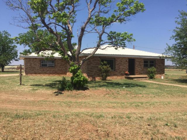 16853 I-40 E, Shamrock, TX 79079 (#18-115321) :: Elite Real Estate Group