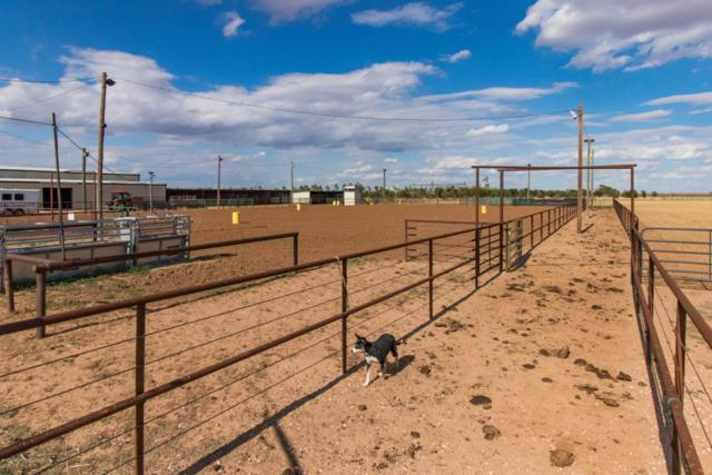 Plainview Equestrian Center, Plainview, TX 79072 (#18-115369) :: Edge Realty