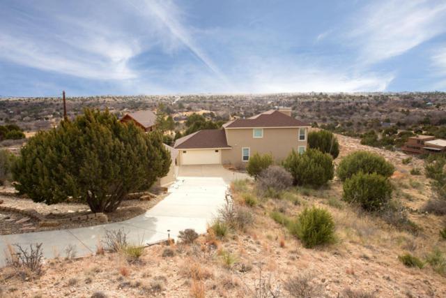 123 Wild Plum, Amarillo, TX 79118 (#18-115412) :: Elite Real Estate Group