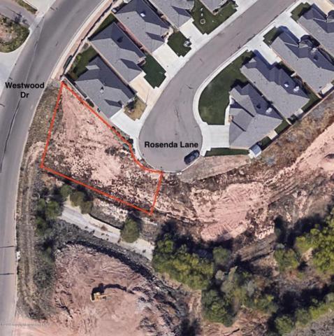 Rosenda Ln, Amarillo, TX 79124 (#18-115420) :: Elite Real Estate Group