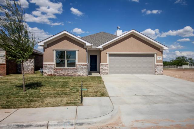 15 Faith Step Ln, Canyon, TX 79015 (#18-115656) :: Lyons Realty