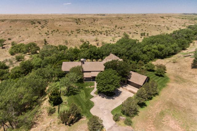 18 Citadel Dr, Amarillo, TX 79124 (#18-115679) :: Elite Real Estate Group