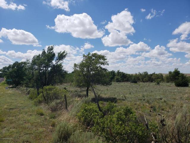 3rd Ave, Alanreed, TX 79002 (#18-115731) :: Lyons Realty