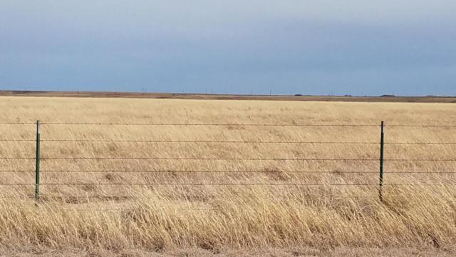 County Rd D 1/2, Pampa, TX 79065 (#18-115737) :: Lyons Realty