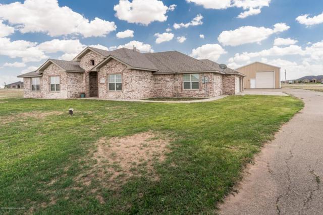 18301 Grasslands Rd, Amarillo, TX 79124 (#18-115750) :: Gillispie Land Group