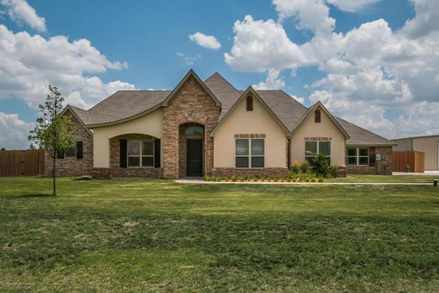 9301 Lundy Ln, Amarillo, TX 79119 (#18-116226) :: Big Texas Real Estate Group