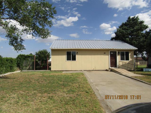 105 Amaryllis St, Borger, TX 79007 (#18-116274) :: Elite Real Estate Group