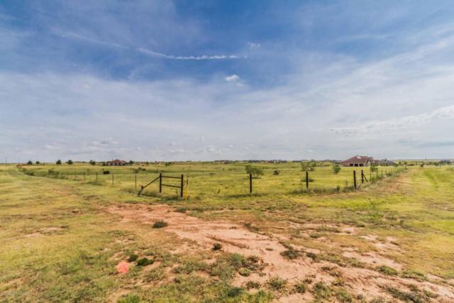 14100 Wild Horse Trl, Amarillo, TX 79118 (#18-116352) :: Edge Realty