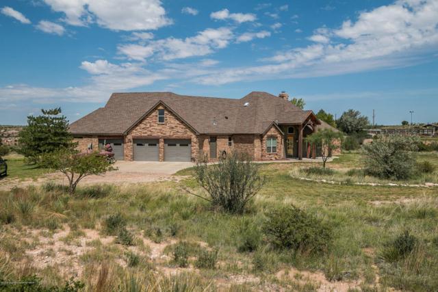 431 Palomino Drive, Amarillo, TX 79118 (#18-116432) :: Elite Real Estate Group