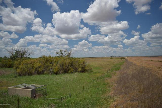 Co Rd H, Memphis, TX 79245 (#18-116505) :: Gillispie Land Group