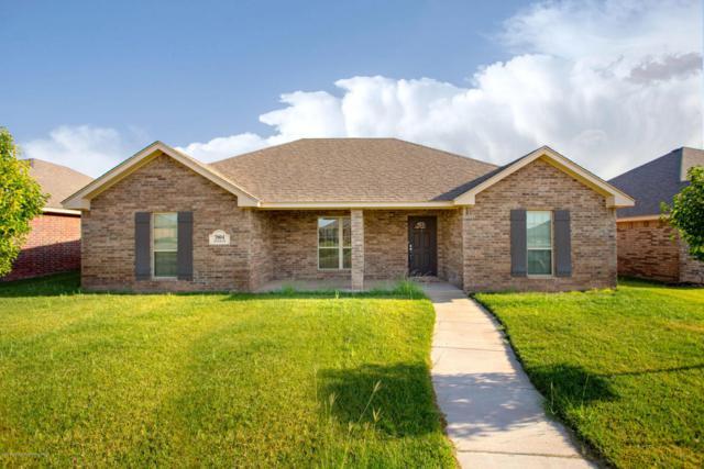 3904 Durham Dr, Amarillo, TX 79118 (#18-116574) :: Edge Realty